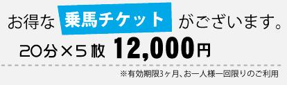 お得な乗馬チケット20分×5枚12000円